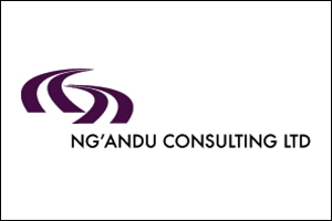Ng'andu Consulting Ltd